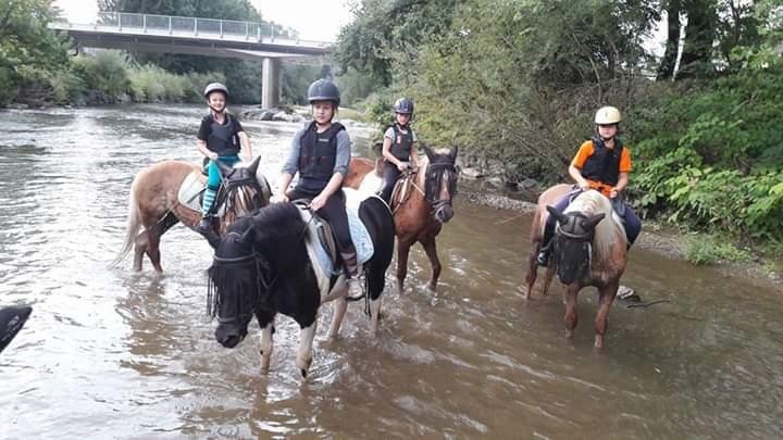 Kinder mit Pferden im Fluss
