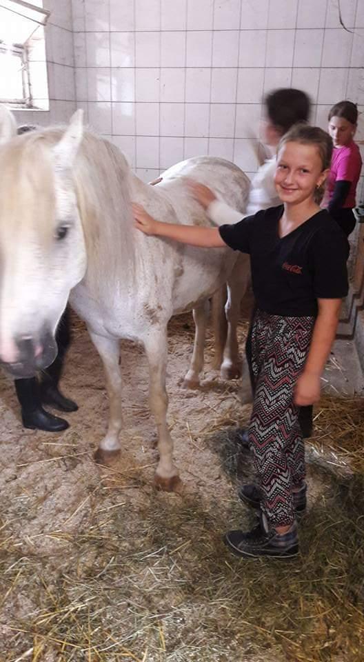 Kind streichelt weißes Pferd