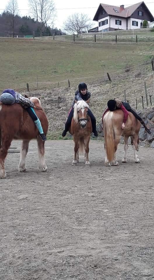 Kinder auf den Pferden liegend