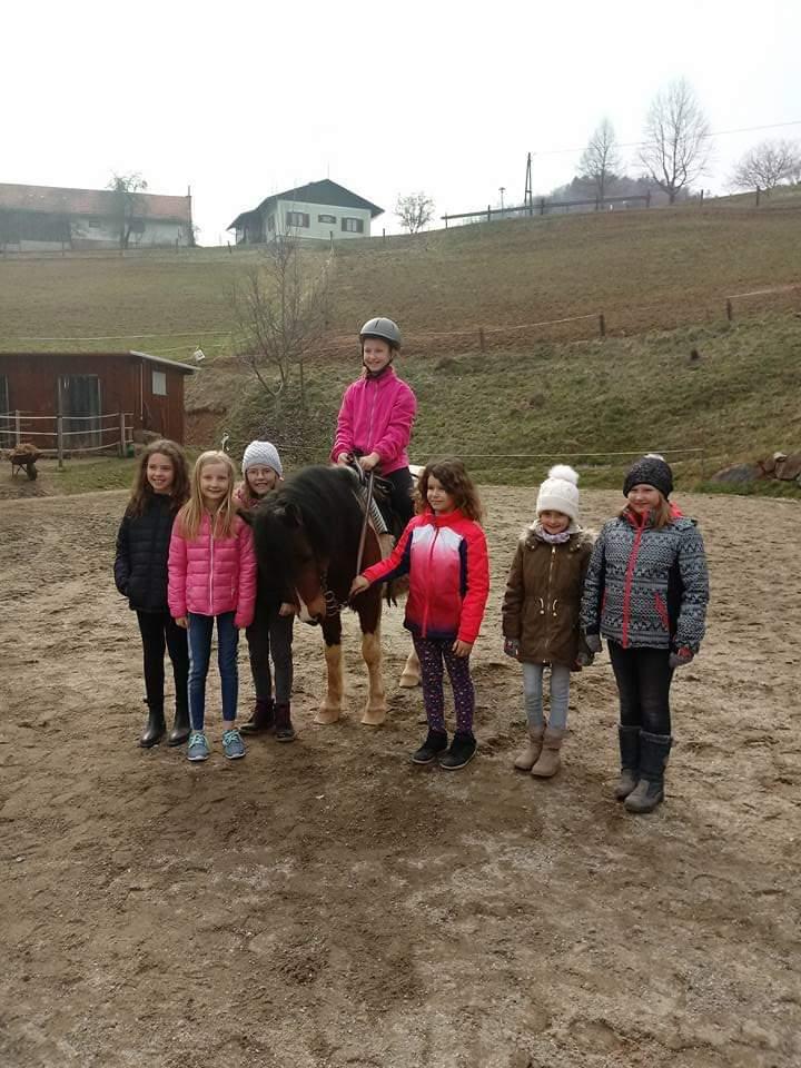 Kinder mit einem Pferd auf dem Reitplatz
