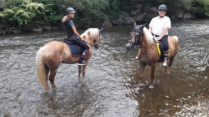 Kinder mit Pferden im Wasser