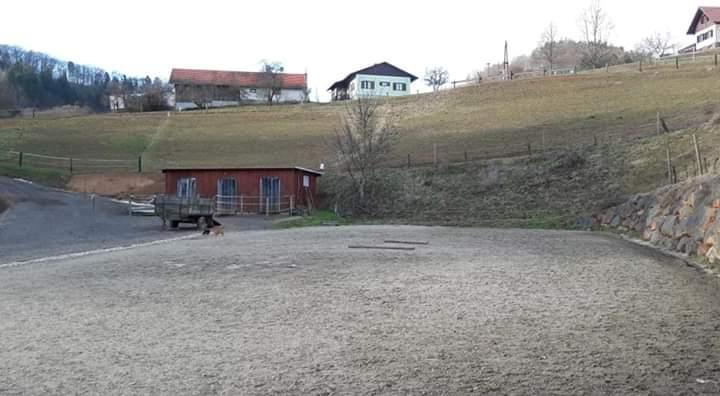 Reitplatz für Reitunterricht am Haflingerhof