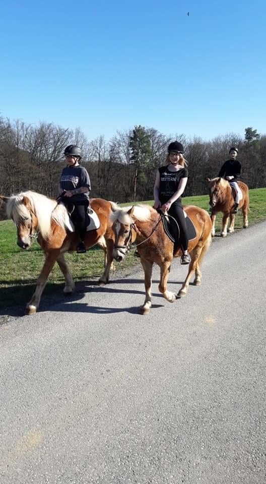 Tagesausritt - Reiter mit Pferden
