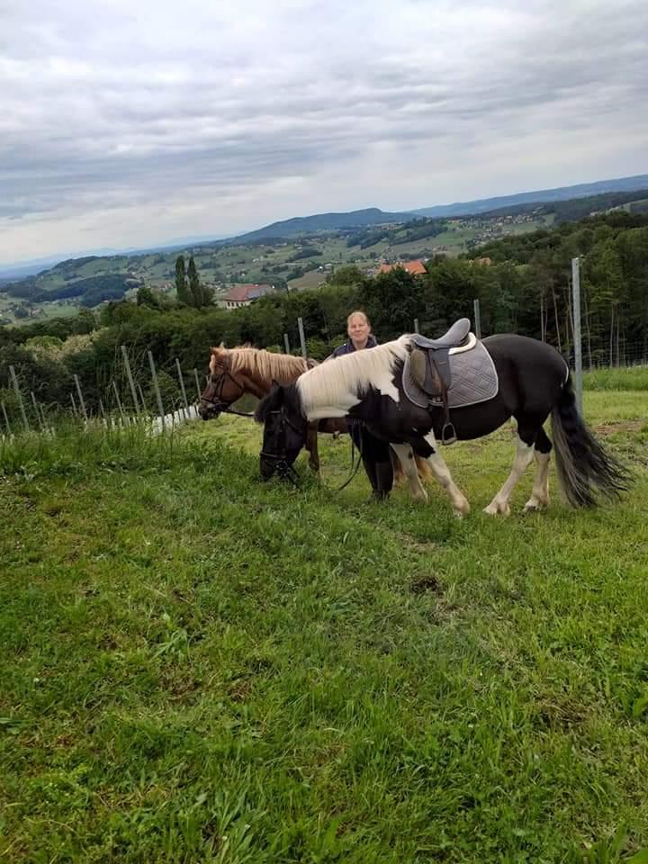 Tagesausritt - Pferde mit Isa
