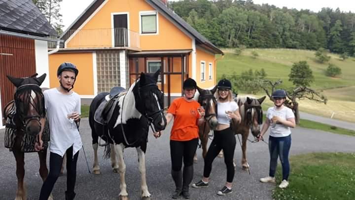 Tagesausritt Pferde mit Leuten